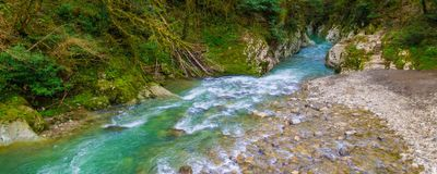 Rivers and Streams Compose Much More of Earth's Surface Than Thought