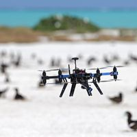 Drones Are Changing the Face of Ecology