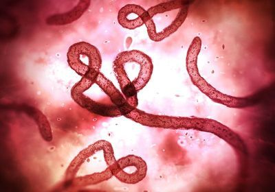 New Ebola Outbreak in Democratic Republic of Congo