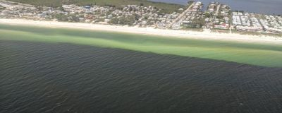 Florida Is Having a 10-Month Streak of Toxic Red Tide