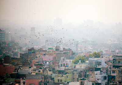 Opinion: Poor Science Contributes to Delhi's Air Pollution Crisis