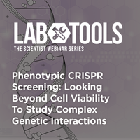 Phenotypic CRISPR Screening: Looking Beyond Cell Viability To Study Complex Genetic Interactions