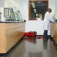 The Challenges of Bringing Service Dogs into the Lab