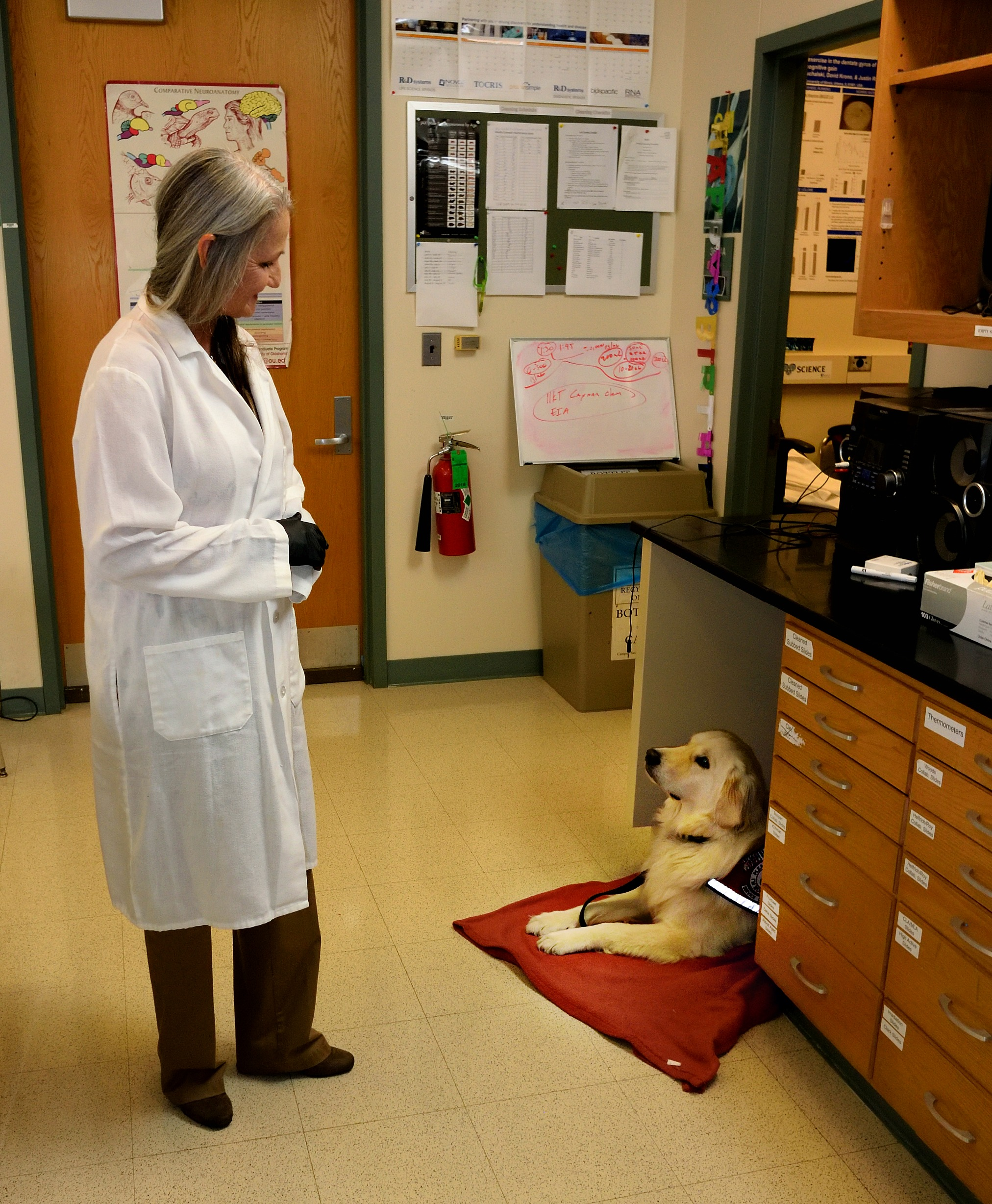 The challenges of bringing service dogs into the lab the scientist ramp and her current service dog sampson in justin rhodess lab at the beckman institute for advanced science and technology at the university of illinois fandeluxe Image collections