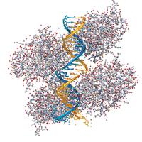 Integrating Multiple -Omics in Individual Cells