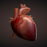 Dozens of Retractions Requested for Heart Stem Cell Studies | The Scientist Magazine®