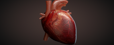 Dozens of Retractions Requested for Heart Stem Cell Studies