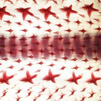 Image of the Day: Shark Skin