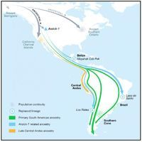 Ancient DNA Maps Early American Migrations in New Detail