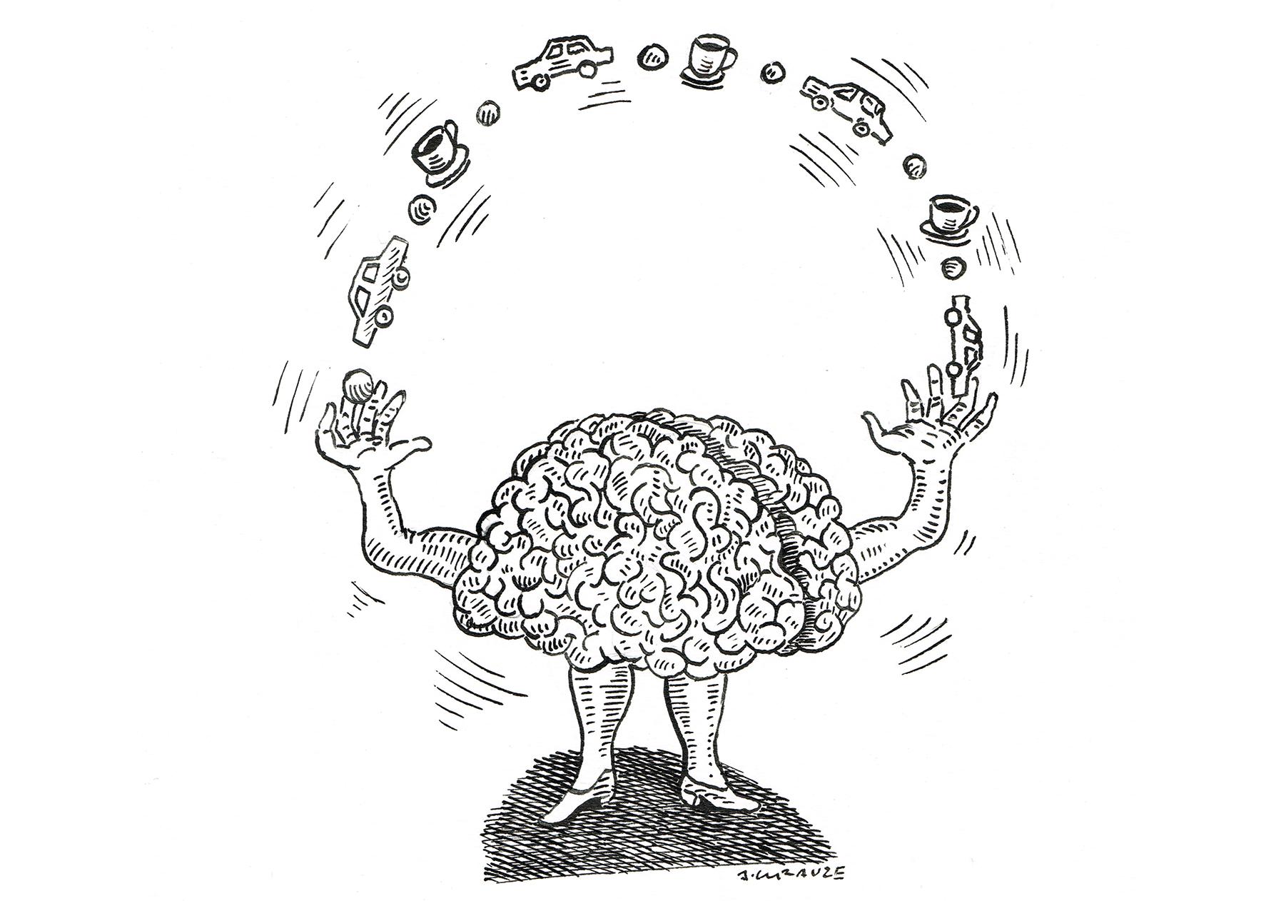 Evolution of the Primate Brain: From Neuron to Behavior (Progress in Brain Research)