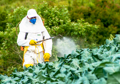 Industry-Funded Pesticide Data Problematic, Study Shows