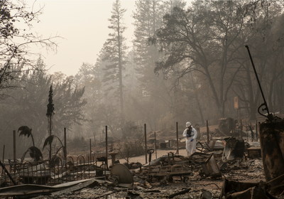 Rapid DNA Analysis Steps In to Identify Remains of Wildfire Victims
