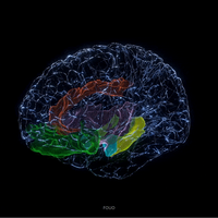 Deep Brain Stimulation of Orbitofrontal Cortex Relieves Depression