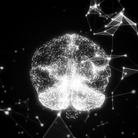 Analysis of 2,000 Brains Provides Clues to Schizophrenia, Autism