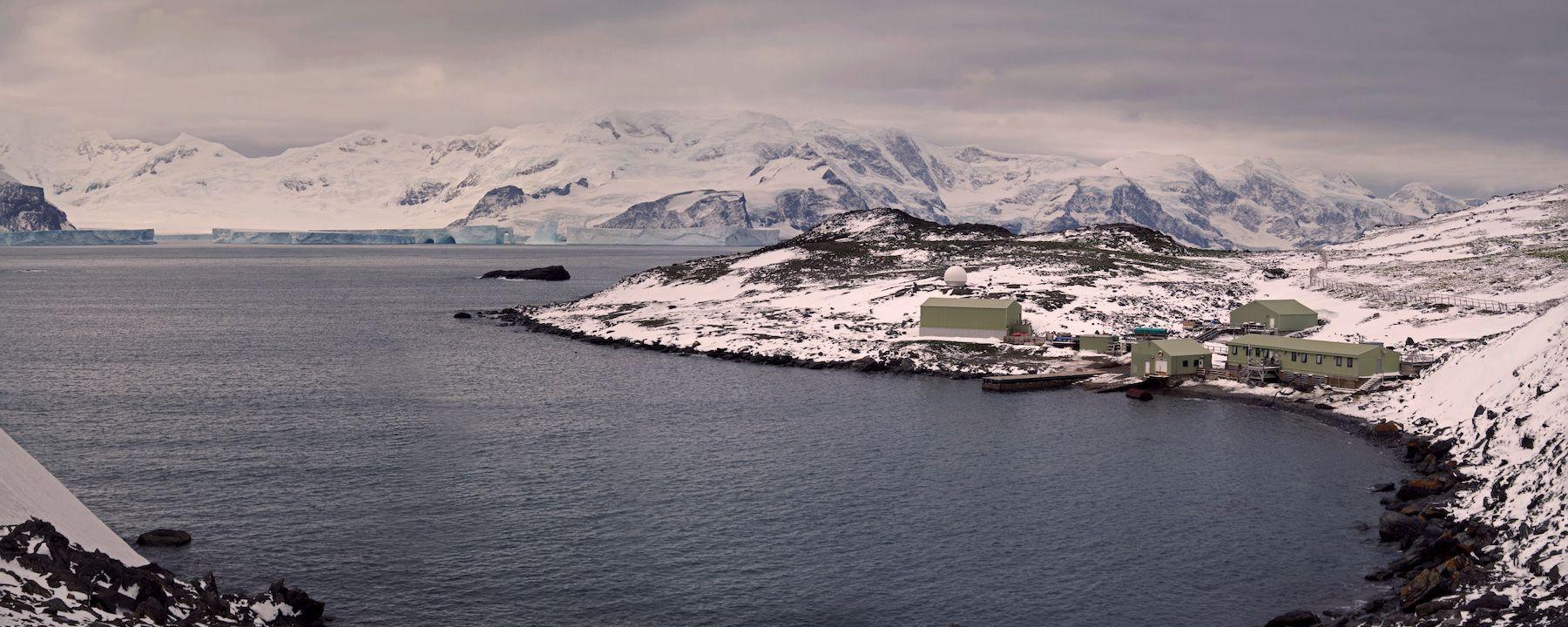 An Invasive Midge Could Wreak Havoc on Antarctica