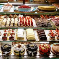 Doubts Raised About Brain Stimulation to Reduce Food Cravings
