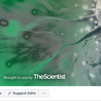 <em>The Scientist</em> Announces Merged Facebook Pages for Improved User Experience