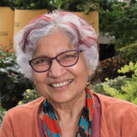 Perennial Explorer: A Profile of Neelima Sinha