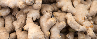 Infographic: How Ginger Remodels the Microbiome