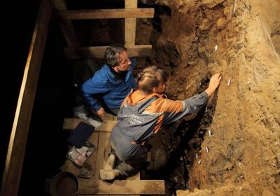 Researchers Home in on When Different Hominins Shared Denisova Cave
