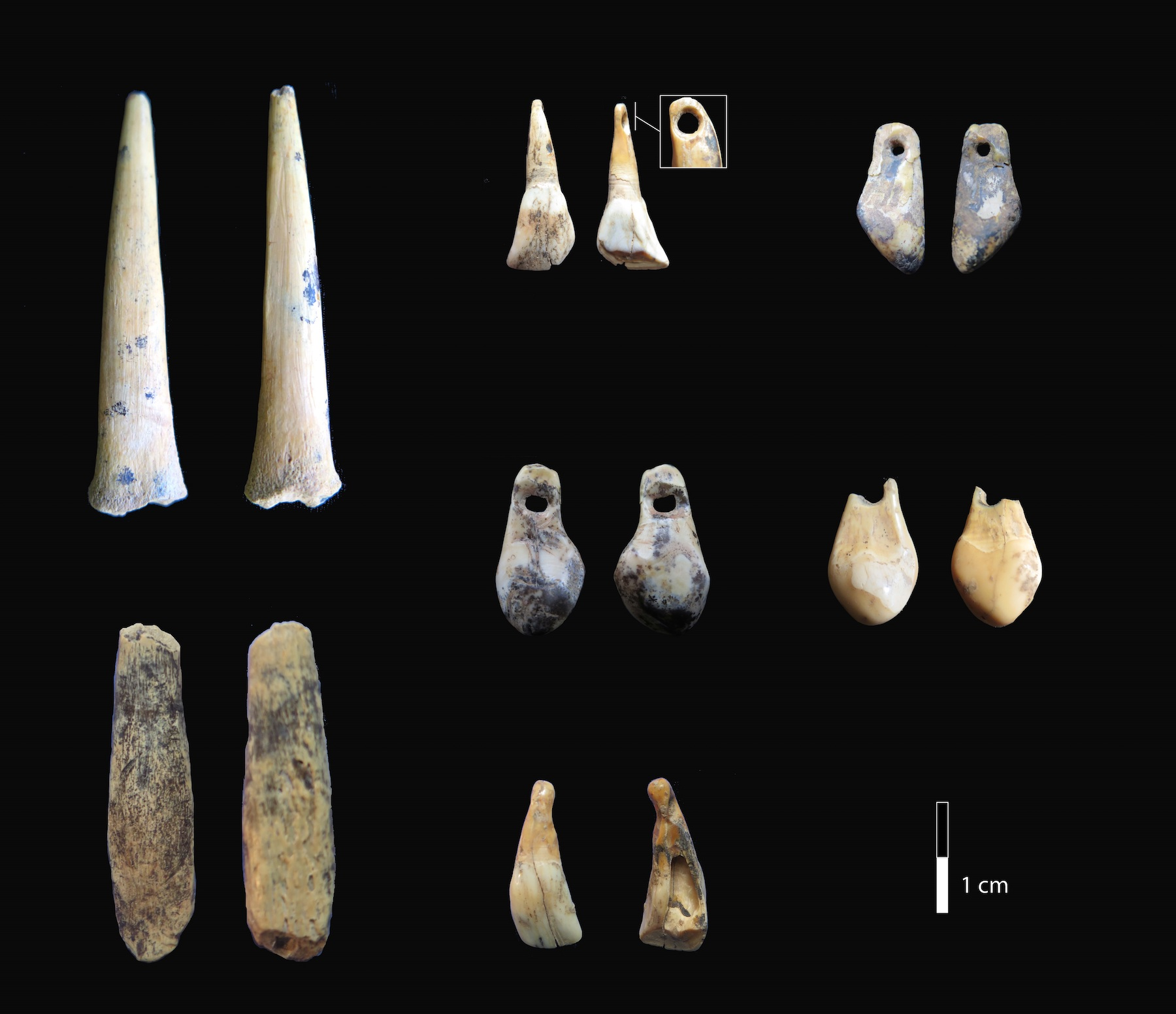 New Evidence Suggests Neanderthals And Denisovans Occupied The Same Siberian Cave