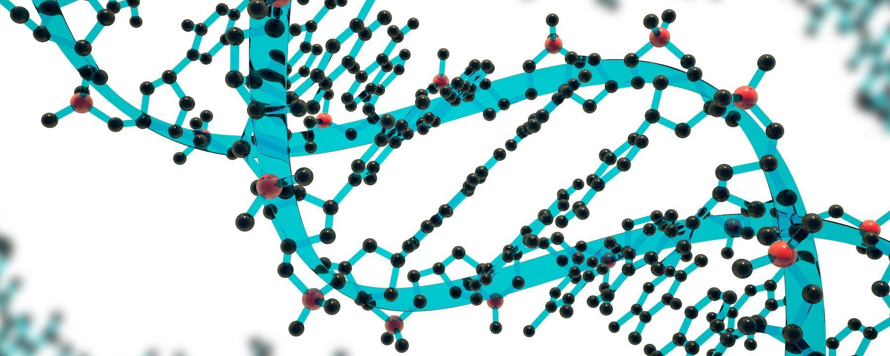 Preliminary Results Point to Success of In Vivo Gene Editing