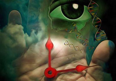Ribosomal DNA Can Predict an Animal's Age