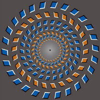 Image of the Day: Under the Illusion