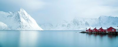Researchers DNA Barcode the Arctic