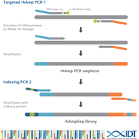 IDT lowers genomic barriers with powerful rhAmpSeq™ targeted sequencing system