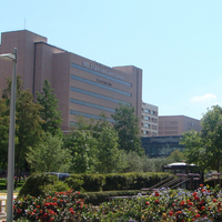 Three Researchers Ousted from MD Anderson