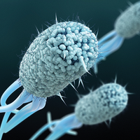Using Machine Learning to Battle Antibiotic Resistance