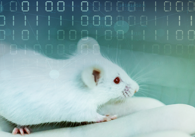 Opinion: AI Beats Animal Testing at Finding Toxic Chemicals
