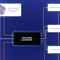 Infographic: How AI Analyzes Cancer