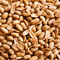 Peanut Allergy Immunotherapy Increases Anaphylaxis Risk: Study