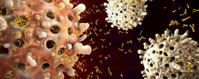 CRISPRed B Cells Produce Antibodies Against Hard-to-Treat Viruses