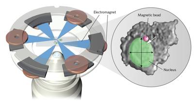 Infographic: High Precision Magnetic Tweezers