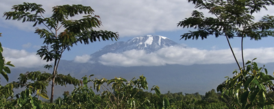 Agriculture and Climate Shape Biodiversity on Mount Kilimanjaro