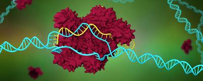 Digital DNA Detection