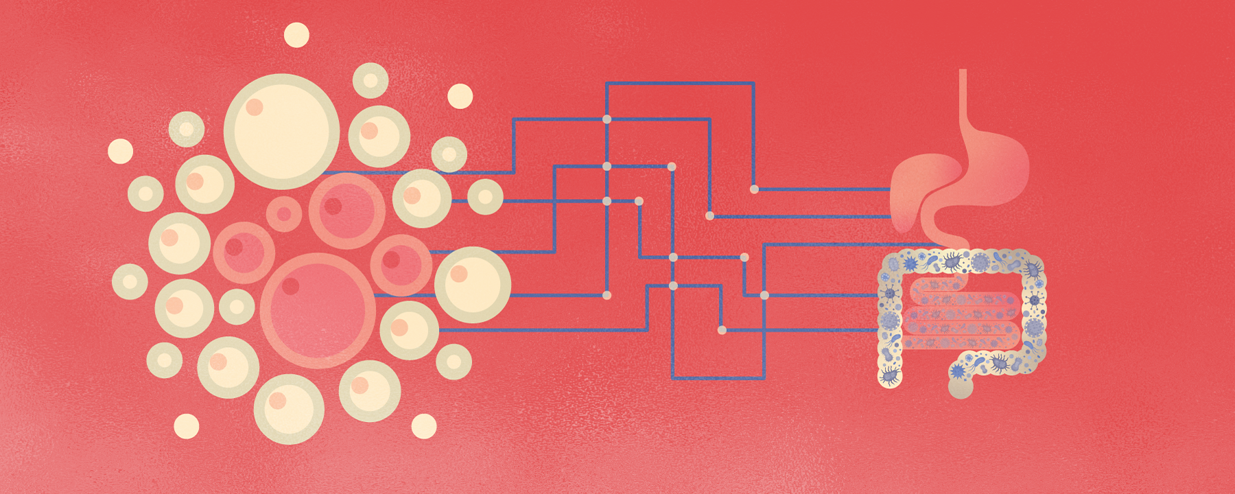 Does the Microbiome Help the Body Fight Cancer?