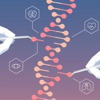 CRISPR Inches Toward the Clinic | The Scientist Magazine®