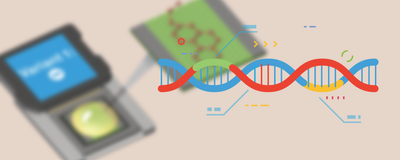 Infographic: DNA Detection with a Chip