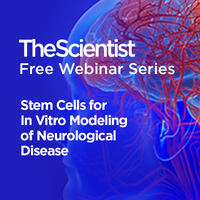 Stem Cells for In Vitro Modeling of Neurological Disease