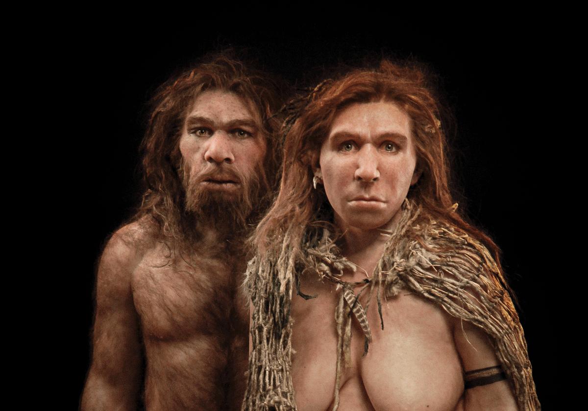 Minibrains & Neanderthal DNA