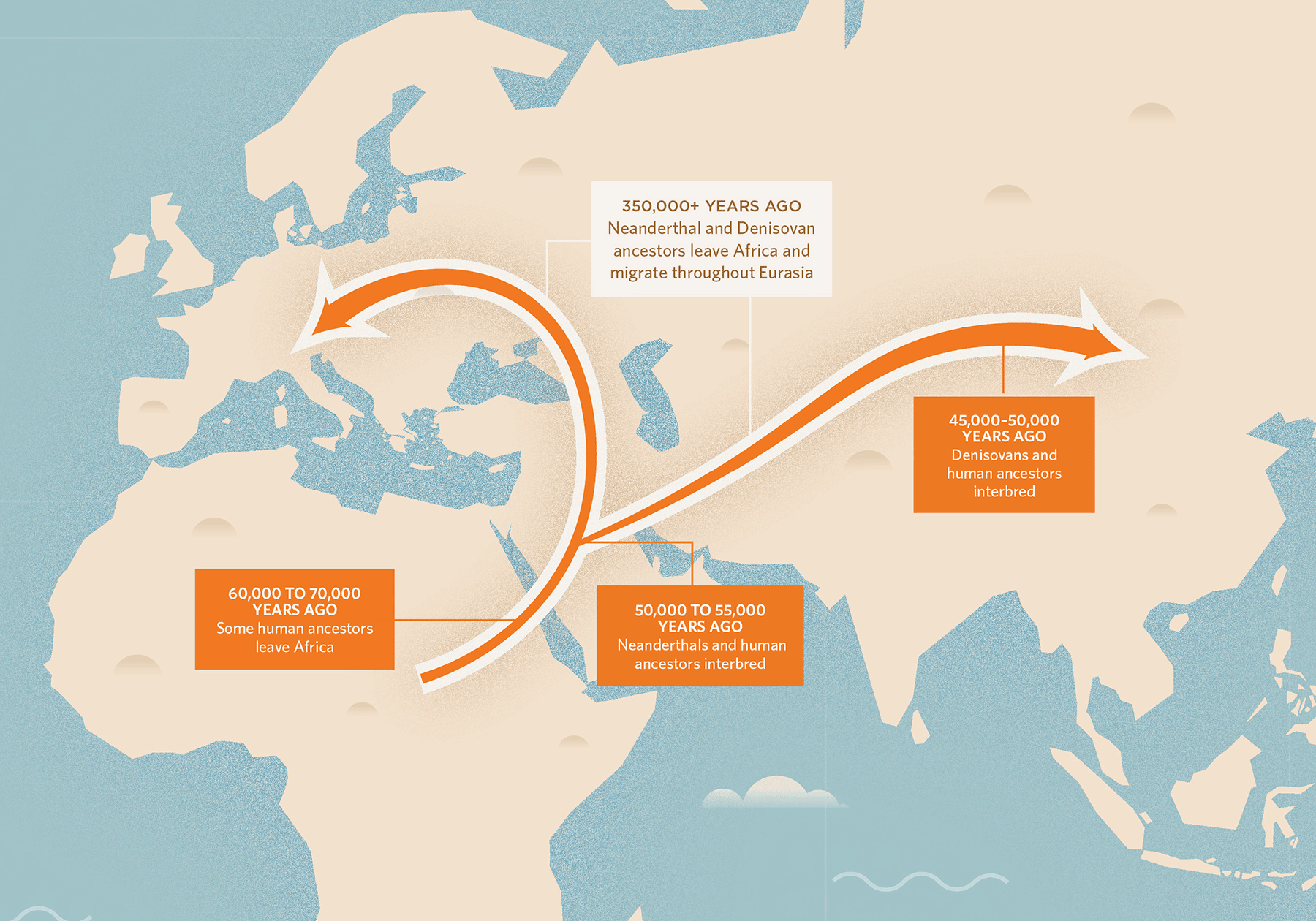Neanderthal DNA in Modern Human Genomes Is Not Silent   The