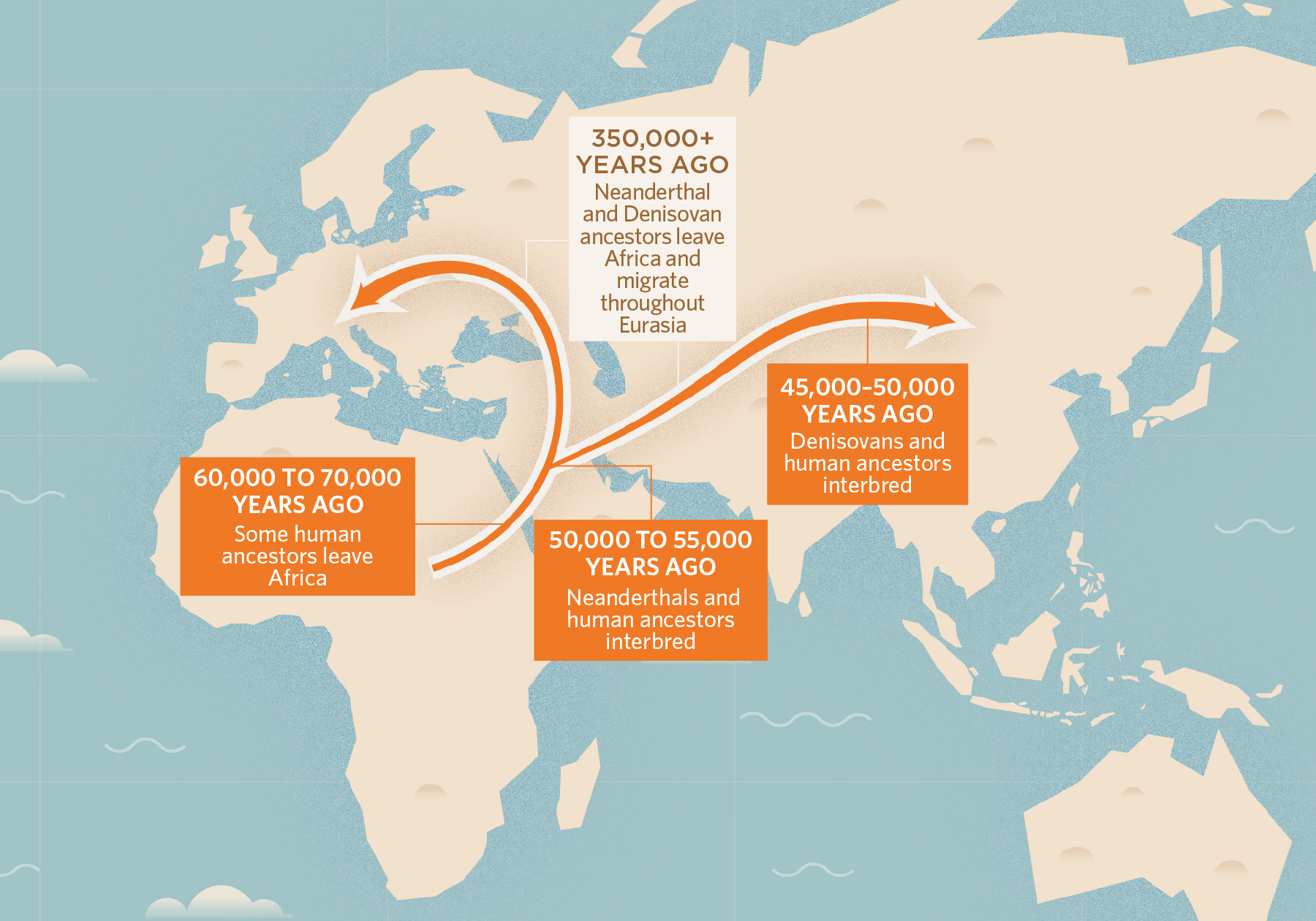 Picture of: Neanderthal Dna In Modern Human Genomes Is Not Silent The Scientist Magazine