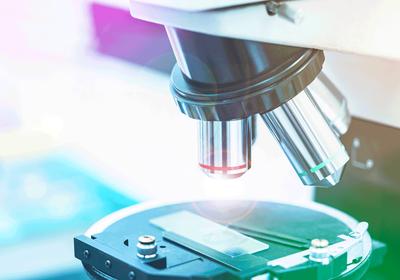 Genetics Models Move Beyond <em>Drosophila</em> and the Humble Lab Mouse