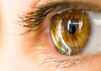 Woman Receives First Corneal Transplant Made from iPS Cells | The Scientist  Magazine®