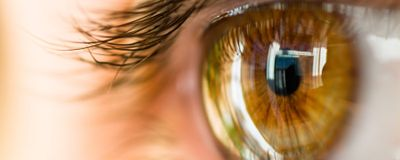 Woman Receives First Corneal Transplant Made from iPS Cells