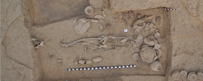 Ancient DNA Traces History of South Asians